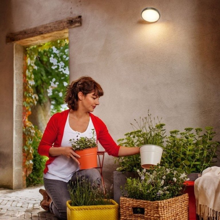 Philips myGarden Moon Wandlamp RVS